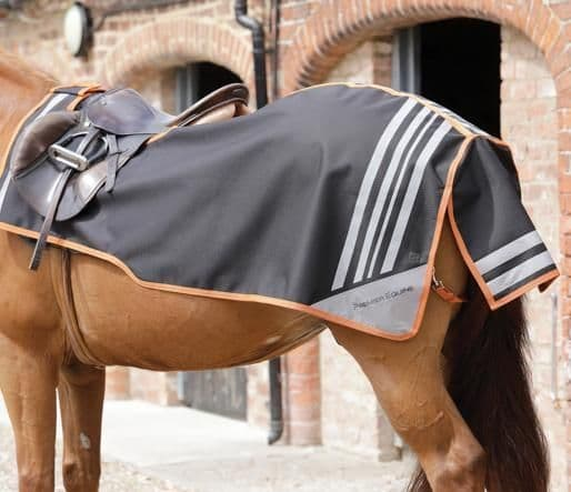 Stratus horse exercise sheet